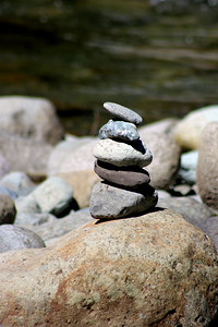 Balance in Nature!