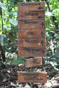 All Trails are Well-marked!