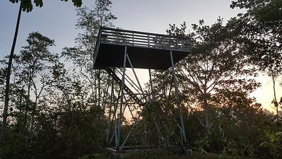 Birding Tower
