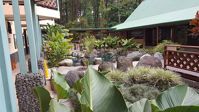 Frog Pond & Waterfall Garden at Main Building