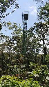 """""""The Nest"""" Lookout Tower & Birding Tower"""