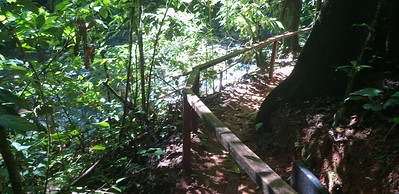 "Side Trail to ""Natural Spa"""