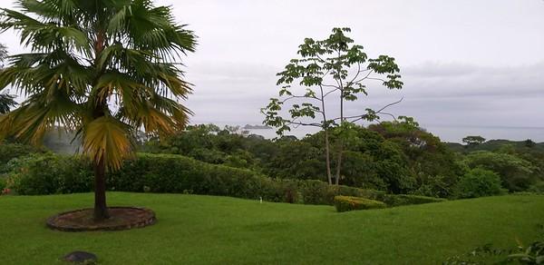 Vista from My Room