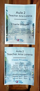 Tico Lingo Language School