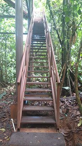 2 Flights totaling 50 Steps to Top