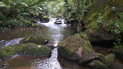 El Silencio Lodge & Reserve, Bajos del Toro Amarillo, Costa Rica