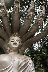 Buddism Temple Saunthamma Pala Nikrotharam