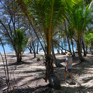 Thala Reserve and Beach