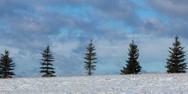 Cowboy Trail, Alberta