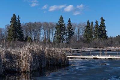 Ominik Marsh Hike