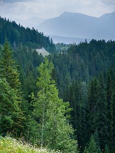 Banff - Windermere Hwy