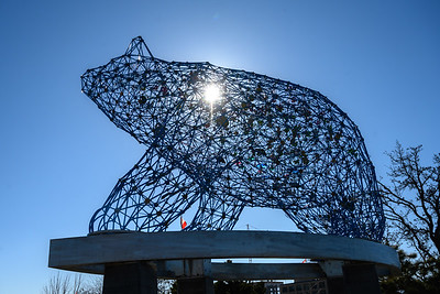 The Bear Statue in Stuart Park
