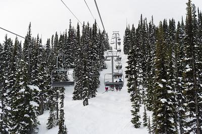 Whistler Skiing