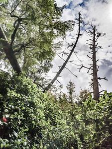 Hike to San Josef Bay