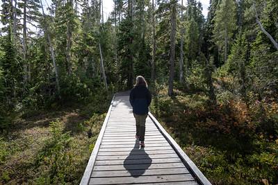 Paradise Meadows Hike