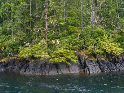 Johnstone Strait