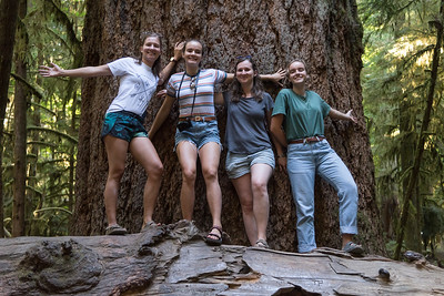 Cathedral Grove Trail