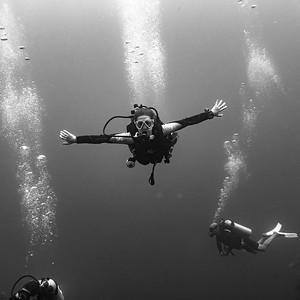 Three Amigos Dive Site