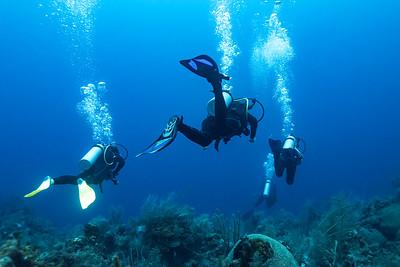 Majestic Point dive site