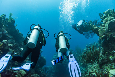 WEST END - ROATAN ISLAND SCUBA DIVING