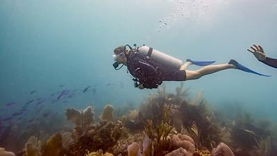 Mary's Place Dive - Roatan Honduras