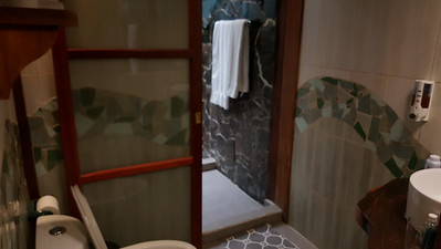 Shower also opens to the bathroom