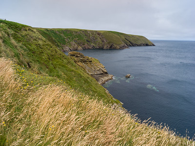Erris Head Loop