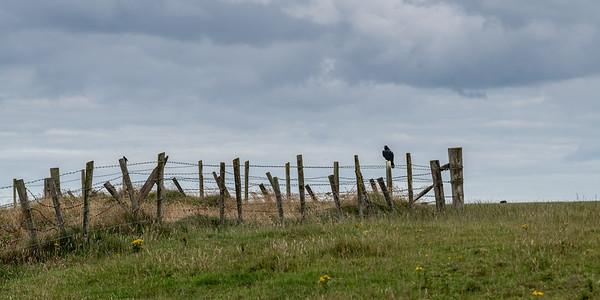 The Coastal Route - Northern Ireland