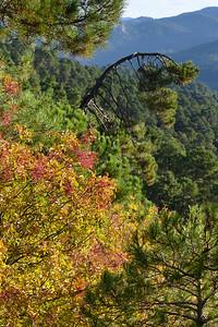 Natural Park Sierra de Cazorla