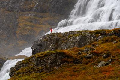 Dynjandi Waterfall