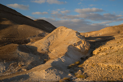 Road to the Back of Masada
