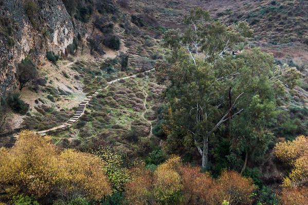 Iyon Stream Nature Reserve