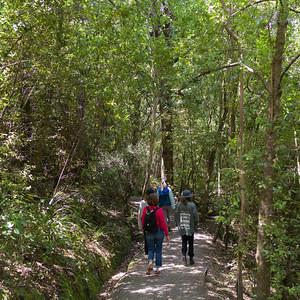 Bobs Cove Hike