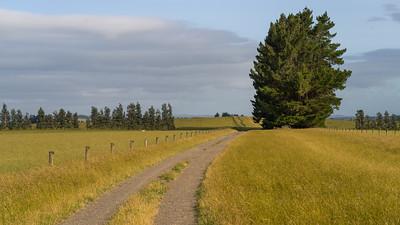 Longridge North, New Zealand