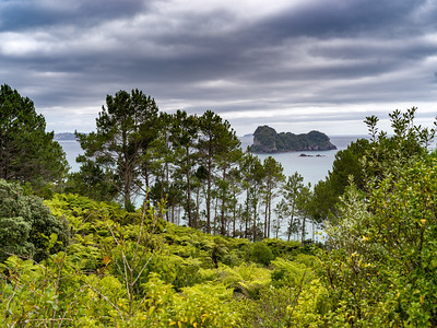 Hike to Cathedral Cove