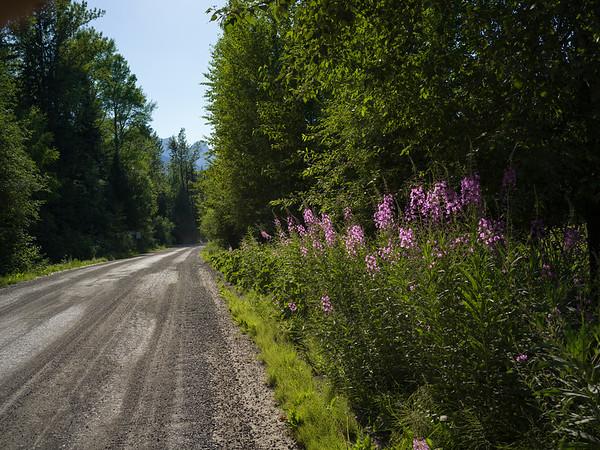 Mt Fernie Provincial Park