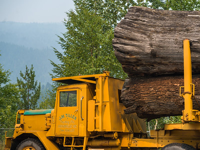 BC Interior Forestry Museum and Forest Discovery Centre