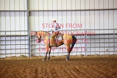 fri 11 - RANCH HORSE - ADULT
