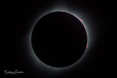 Inner corona, prominences and chromosphere