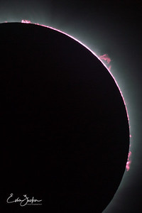 Prominences and chromosphere, 8x12