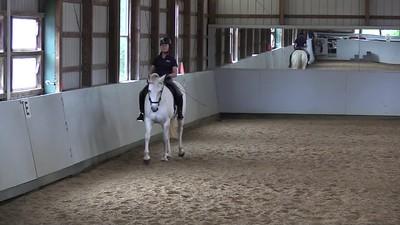TSRC 2017-10-28 Wildfire Farm Video