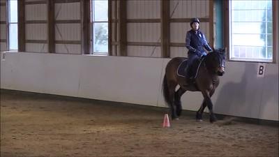 TSRC 2018-01-12 Wildfire Farm Video