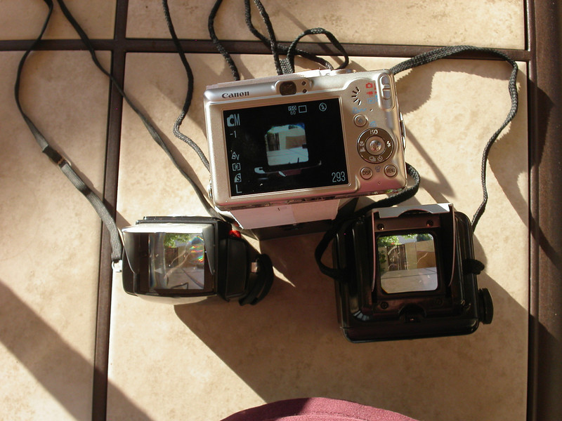 View through  cameras and screen. btw, I dislike and don't use straps - its kinda funny that they're on the donor cameras.