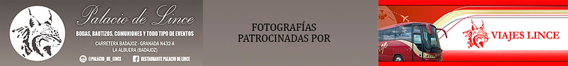 FALDON FOTOS 40ffie