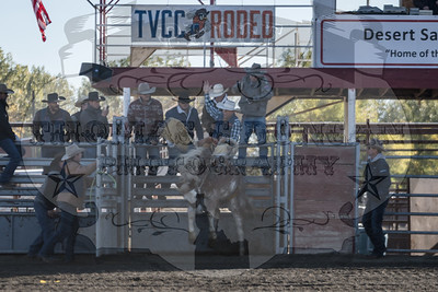TVCC Rodeo 2018 - Sunday Short-Go