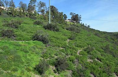 TVSD 2 Mile Hike