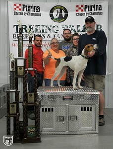 2017 TWB&FA Days Overall Dog of Hunt