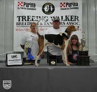 2017 Lee Crawford Invitational Overall Dog of Show