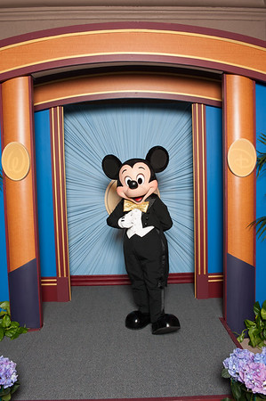 2009 Mickey Mouse