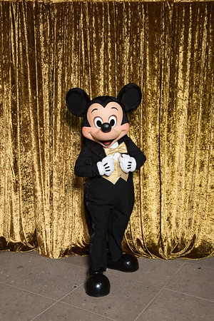 2015 LA Mickey Mouse